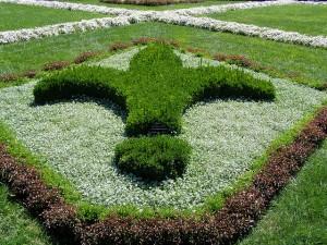 fluer_de_lis_garden