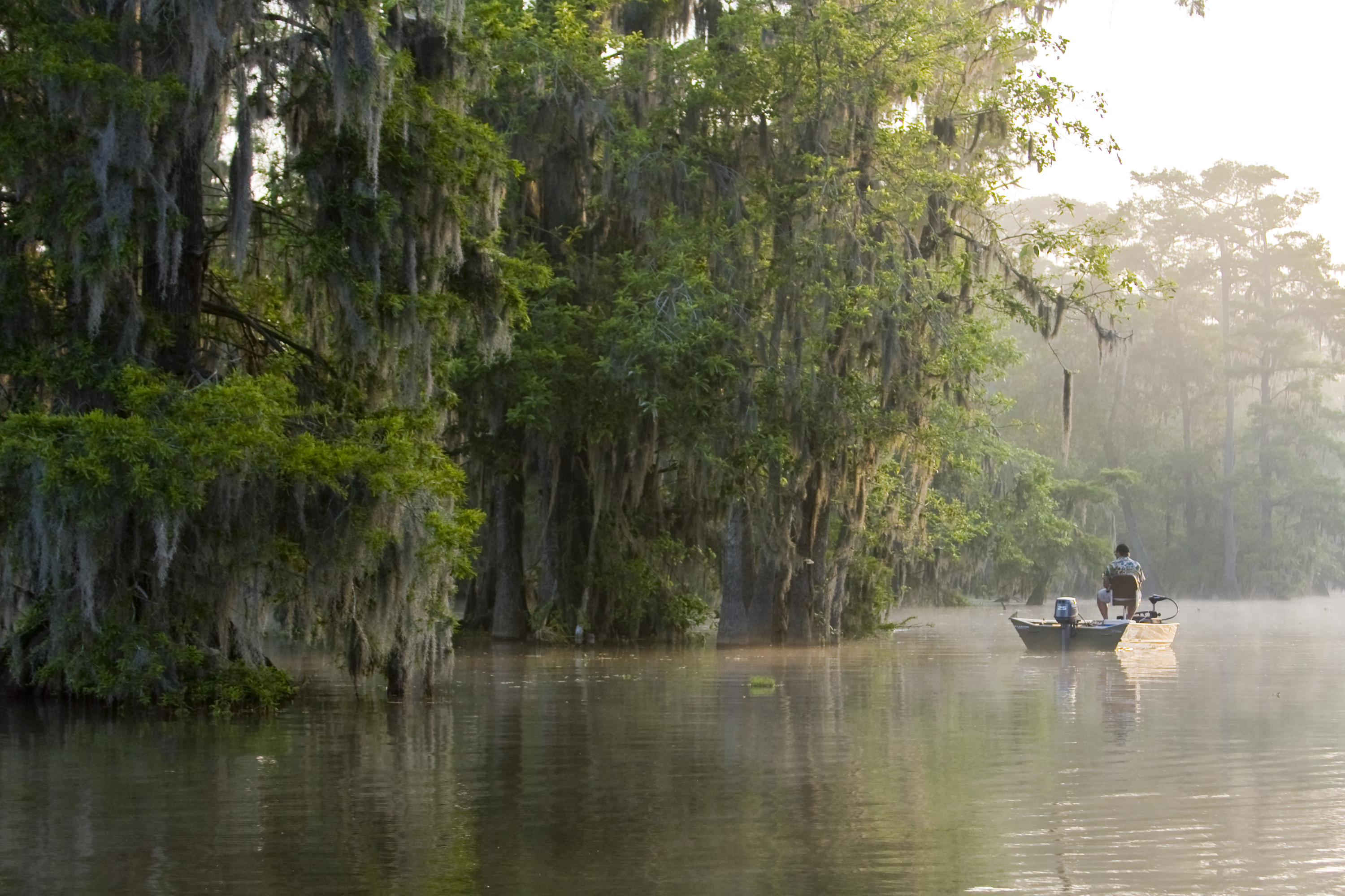 Atchafalaya Basin - Fishing