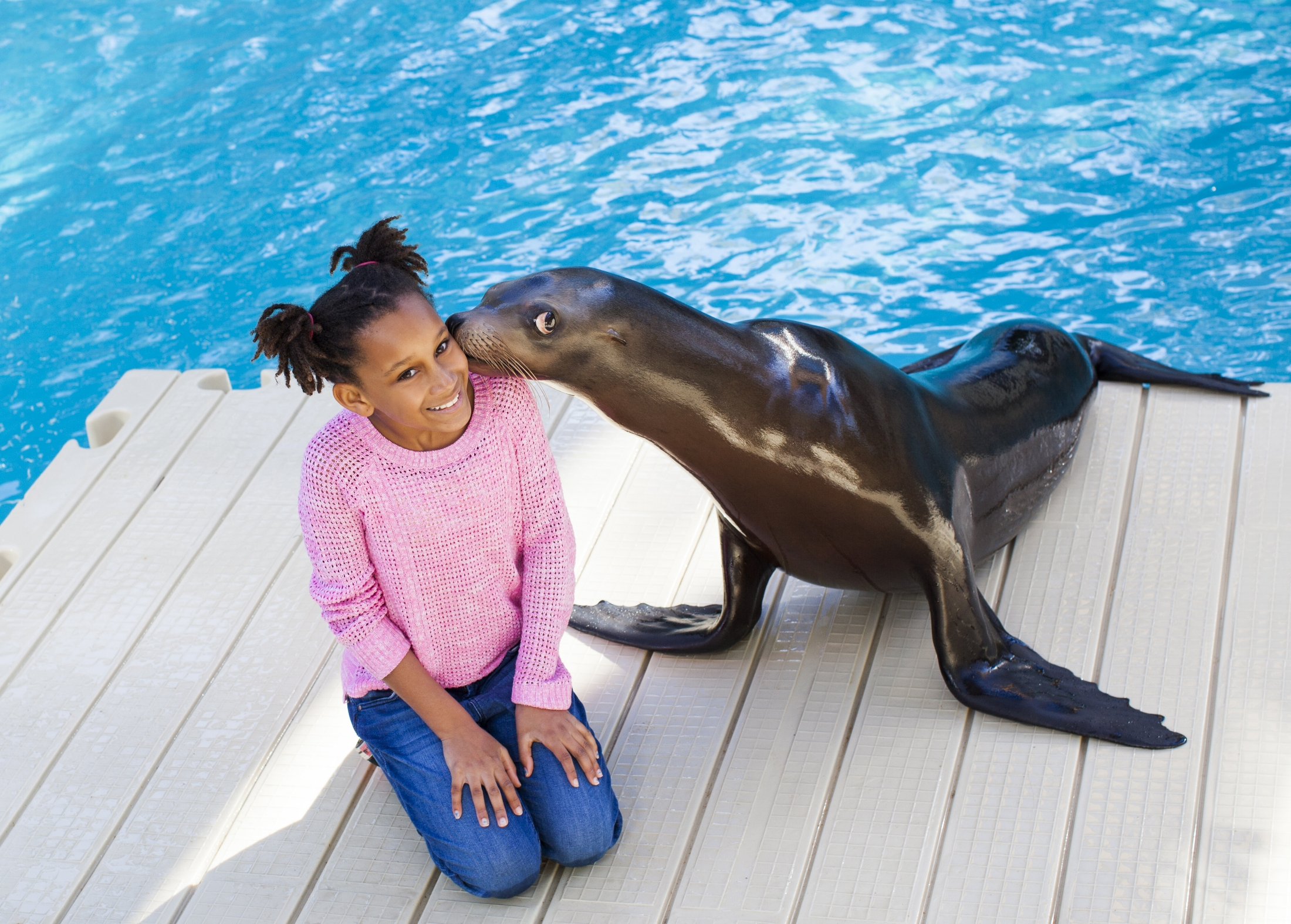 Seal With Girl