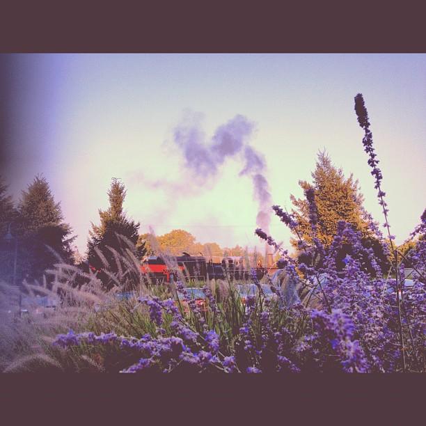 Captured by Instagram User @meemu88
