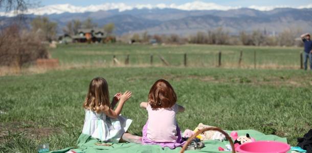 Boulder Picnic