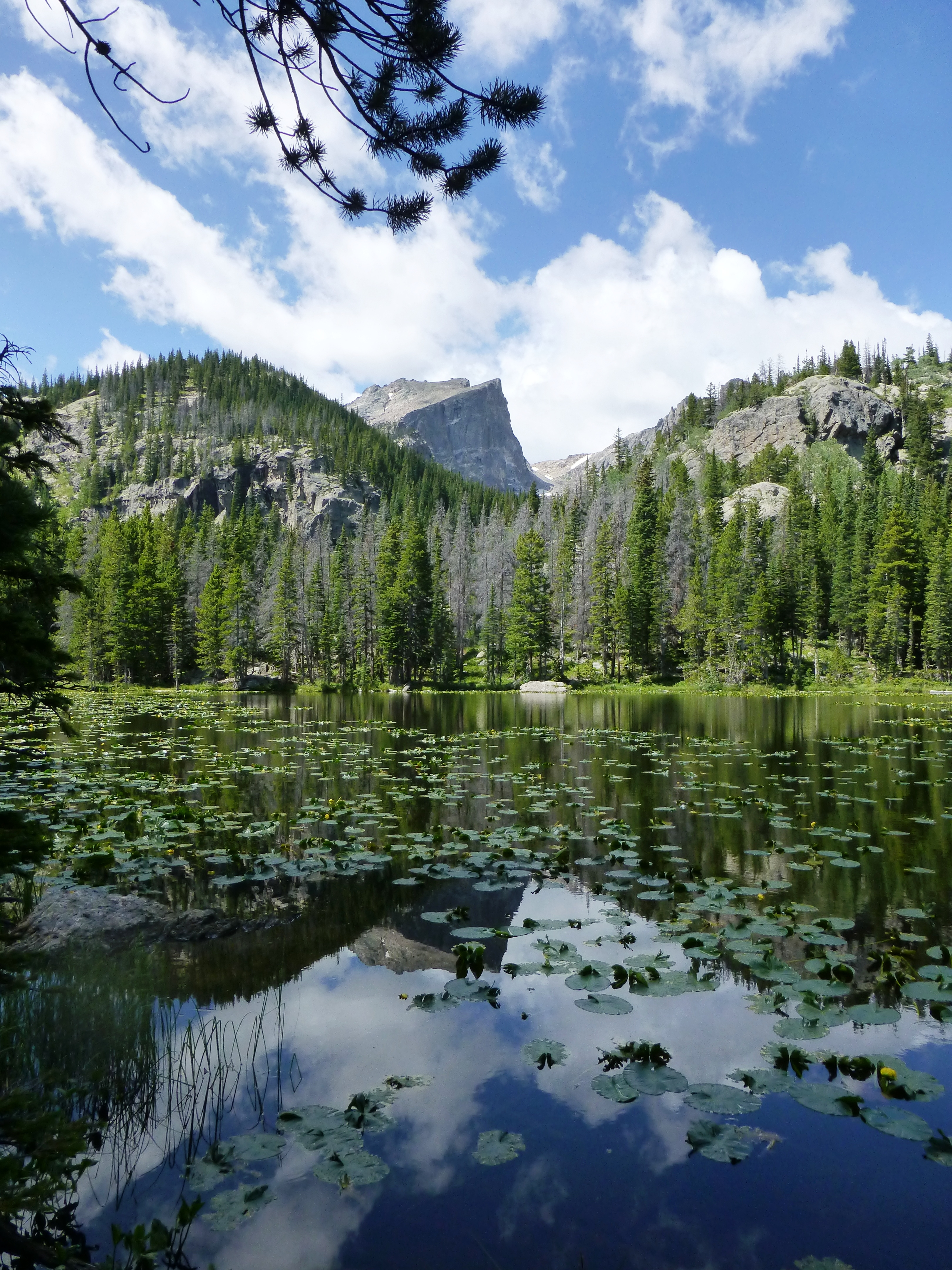 03f54dd608f9 Denver Mountain Parks