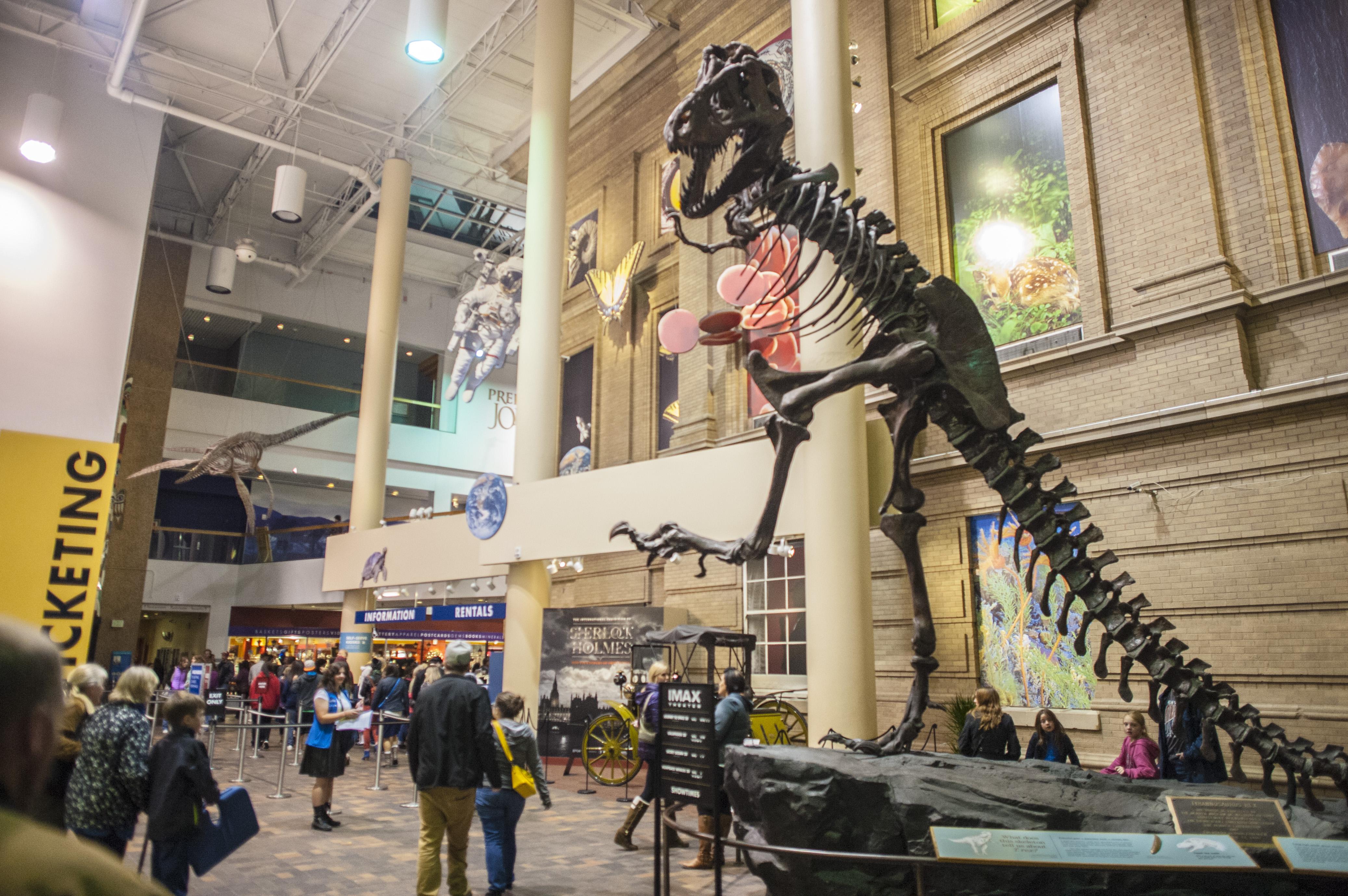 After-Hours at Denver's Museums | VISIT DENVER