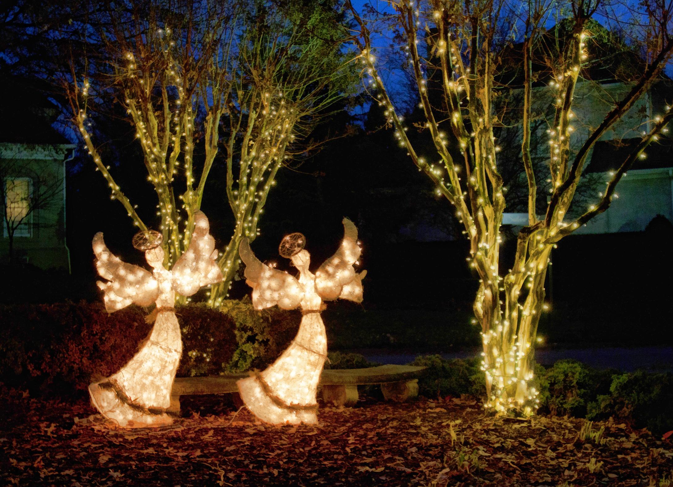 Birkdale Christmas Tree Lighting 2021 Lake Norman Christmas Light Up Cornelius Lighted Boat Parade