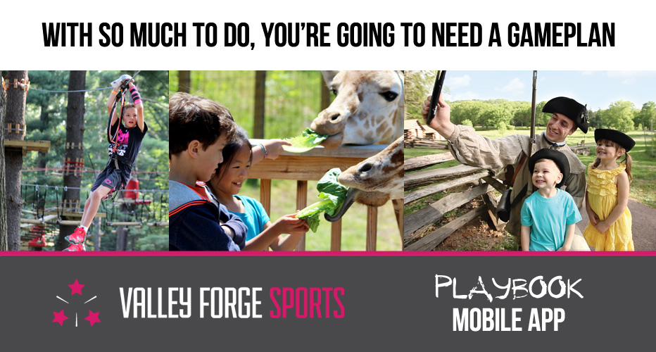 Valley Forge Sports Playbook Banner Ad