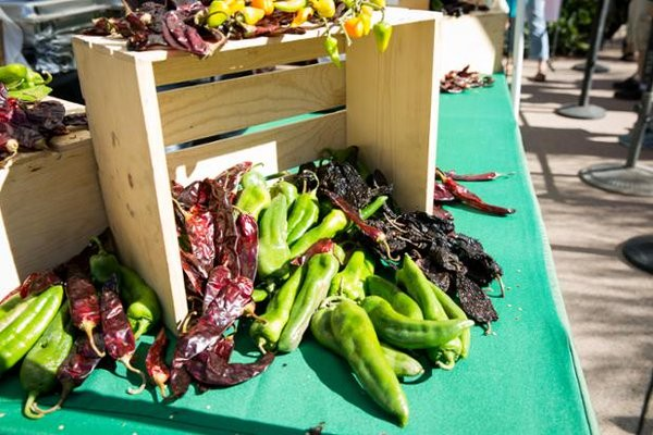 Chiles and Chocolate Festival. Photo Credit: Desert Botanical Garden via Facebook