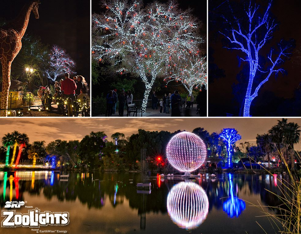 Holiday Events In Phoenix - Phoenix Zoo Christmas Lights