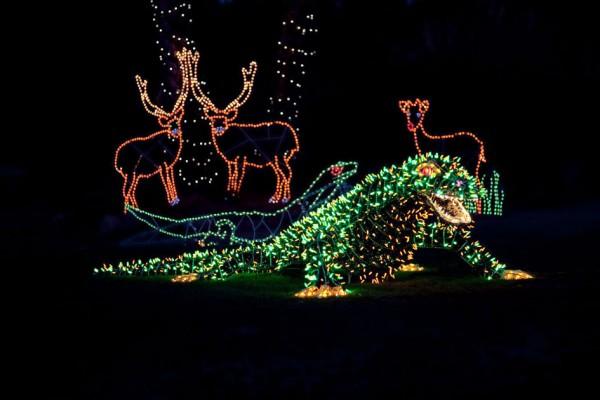 ZooLights Phoenix Zoo