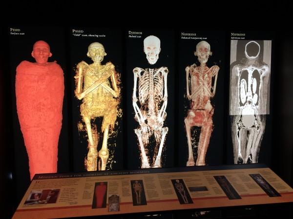 Mummy Lost Eqypt exhibit
