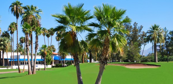 Photo courtesy of Arizona Golf Resort