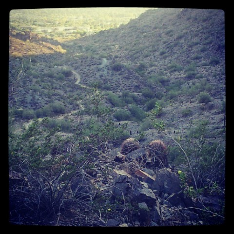 Quartz Ridge Trail