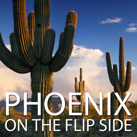 Flip Side image