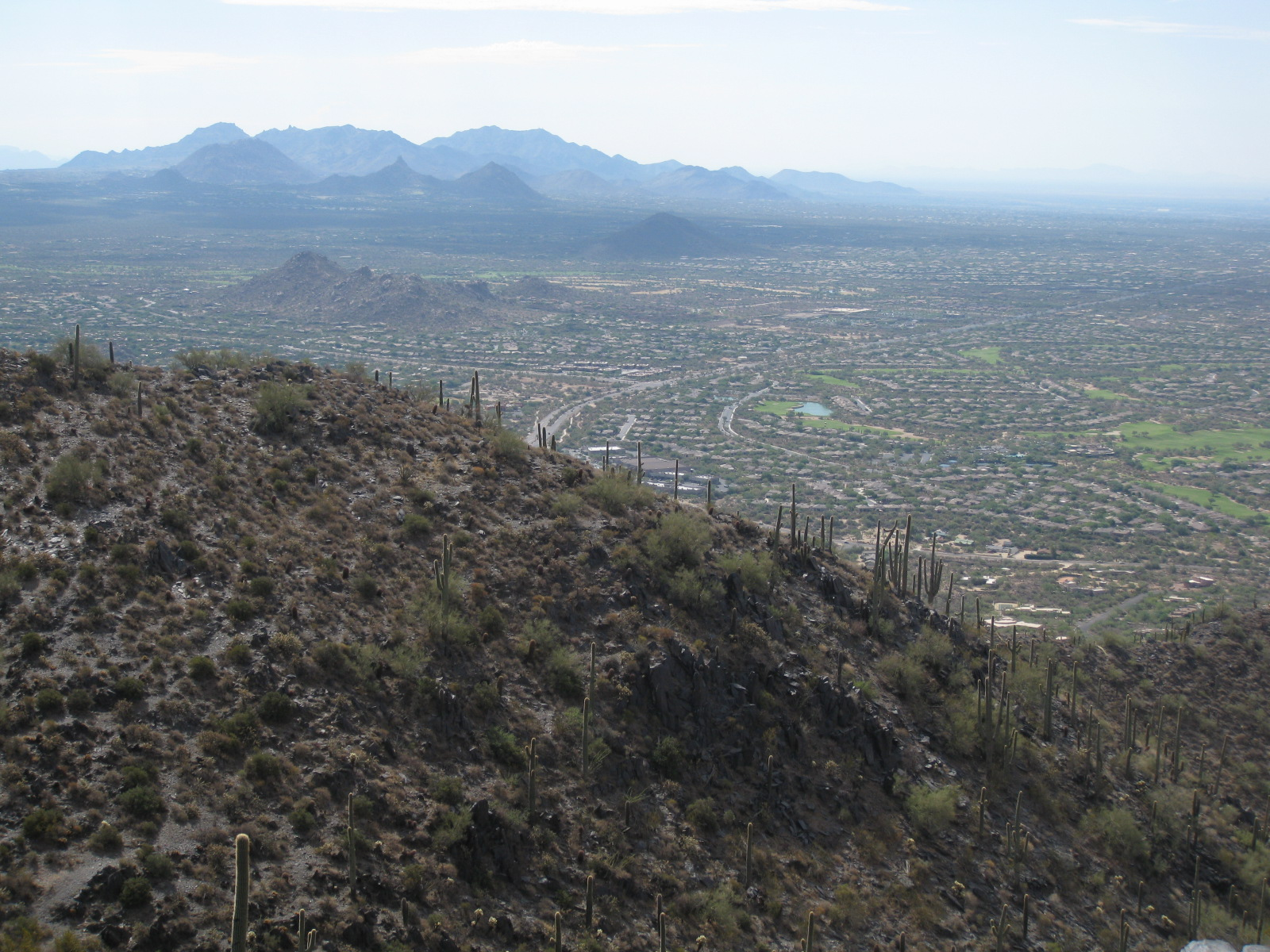 View of the McDowell Mountains