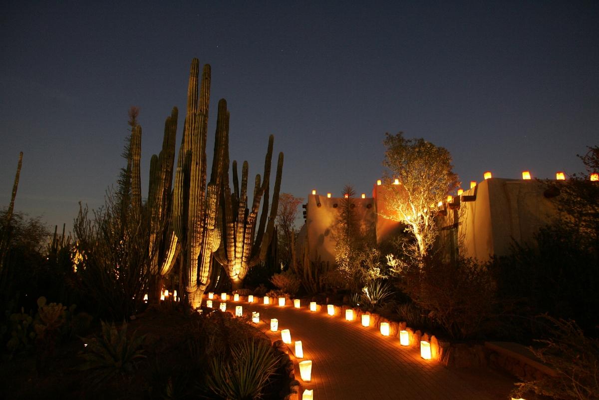 Las Noches de las Luminarias at Desert Botanical Garden