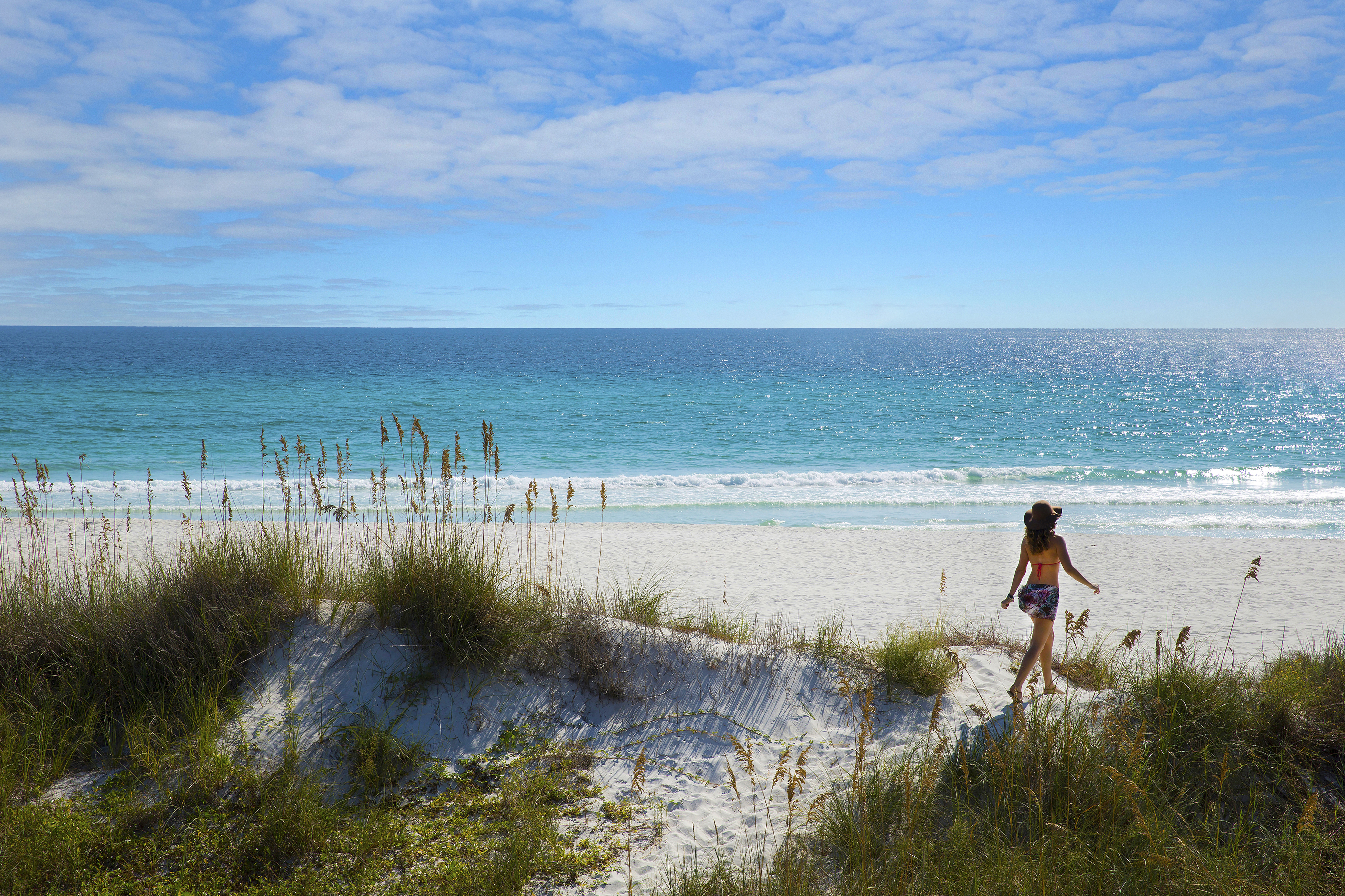 Things to Do in Panama City Beach | Find Attractions & Tours