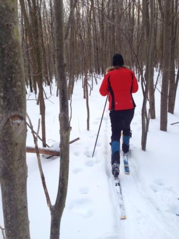 Gerry_Hicks_Skiing.jpg