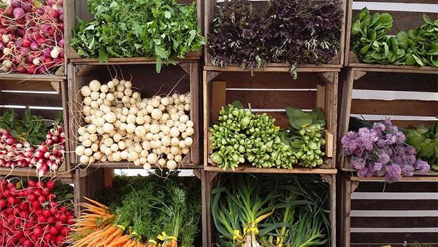 Callicoon Farmers' Market