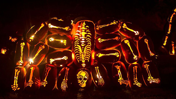 Great Jack O'Lantern Blaze - Photo Courtesy of Historic Hudson Valley by Tom Nycz