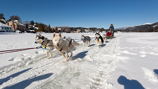 Dogsled Rides on Mirror Lake - Photo by NYS ESD