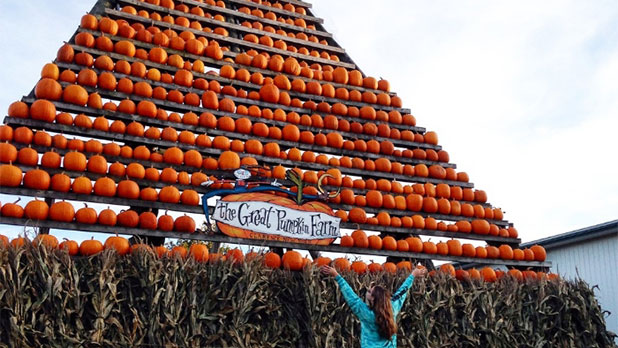 Great Pumpkin Farm Fall Festival