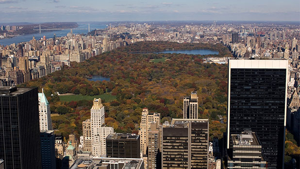 Fall NYC Skyline with Central Park