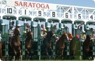 saratoga-race-course.jpg