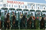 saratoga-race-course.jpg