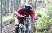 wfmtnbike3.jpg