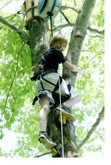 climbing-forset.JPG