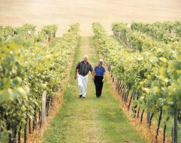 Clover Hill Vineyard & Winery - Credit Hub Wilson (20)