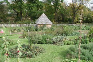 Burnside Garden