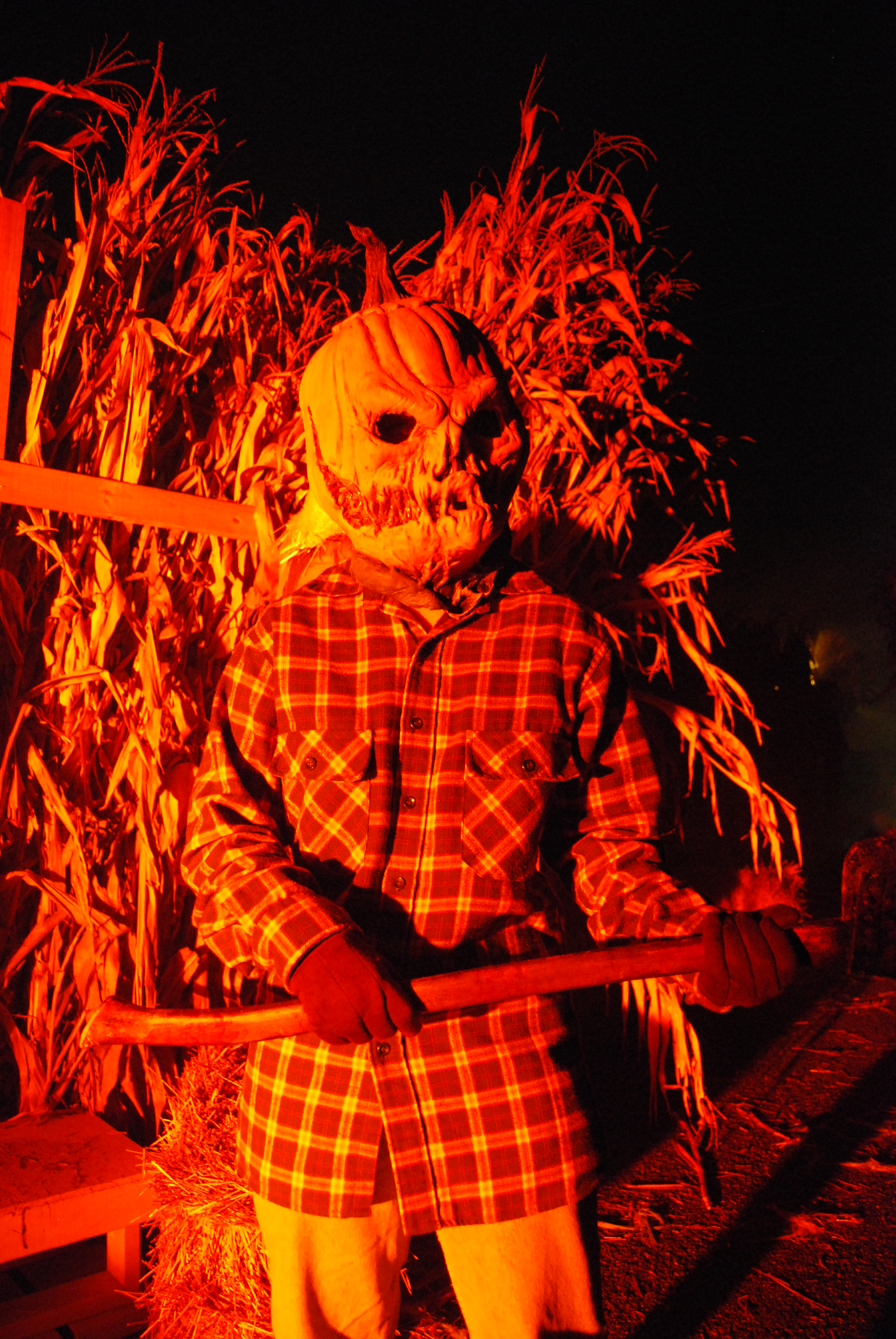 The Halloween Haunt at Dorney Park (4)