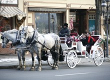 Winter Carriage Rides (5)