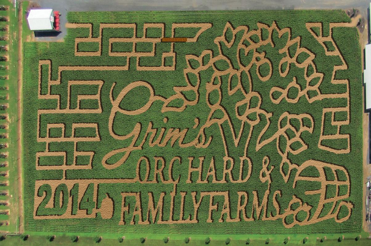 Grim's 2014 Corn Maze