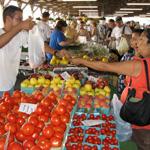 Leesport-Farmers-Market-(sm)