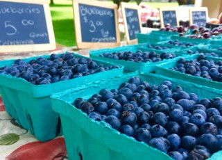 The Blueberry Festival is held at Burnside Plantation each July.