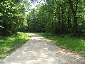 Howell Woods