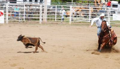 Benson Mule Days