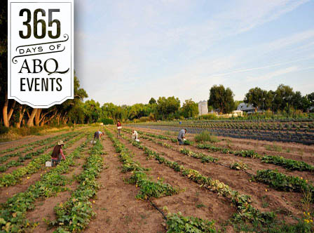 Meet the Farmer Workshop: Seeds - VisitAlbuquerque.org