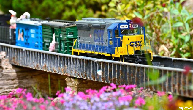 A model train chugs through the foliage at the ABQ BioPark's Railroad Garden. Volunteers from the New Mexico Garden RailRoaders Club maintain two 400-foot loops of G-gauge trains