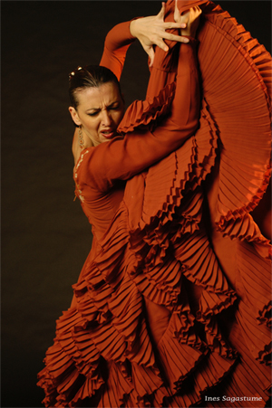 Flamenco Dancer - Ines Sagastume