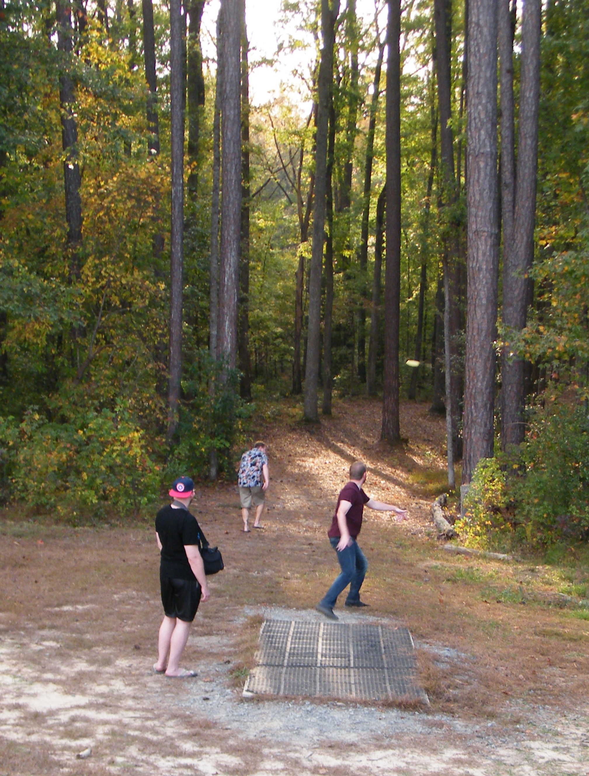 Disc Golf_Apex