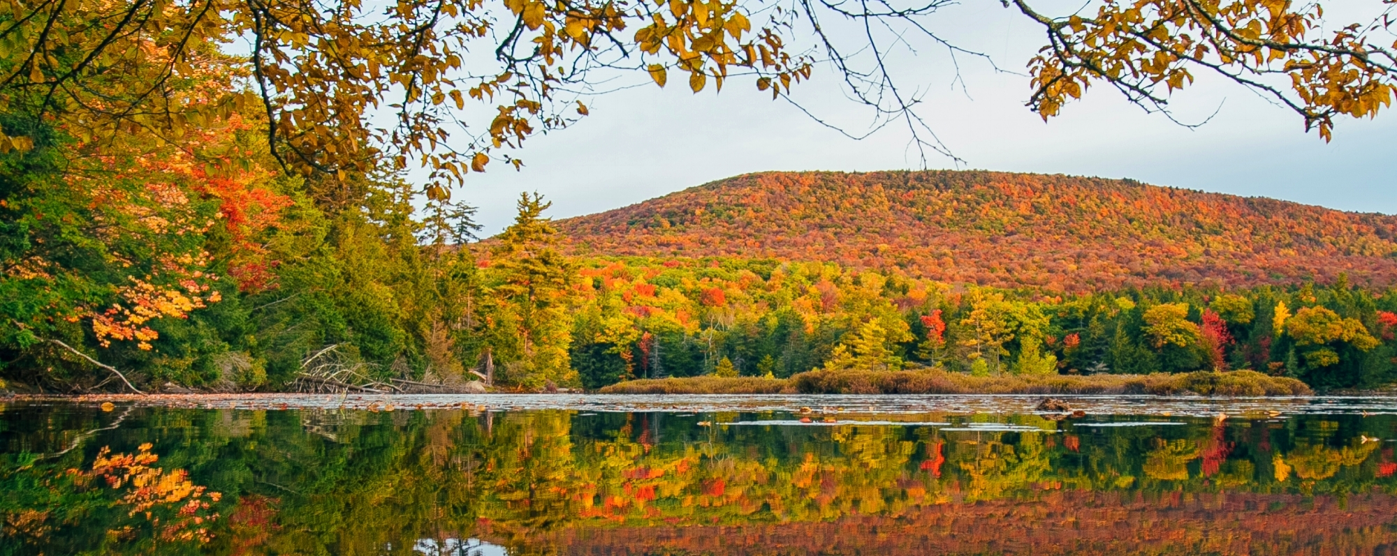 Catskills NY | Find Attractions, Events & Information