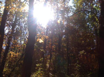 Stoney Run, Indiana, Trails