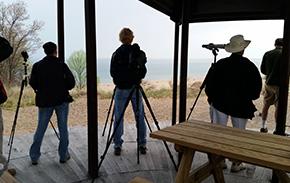 Indiana Dunes Birding Festival