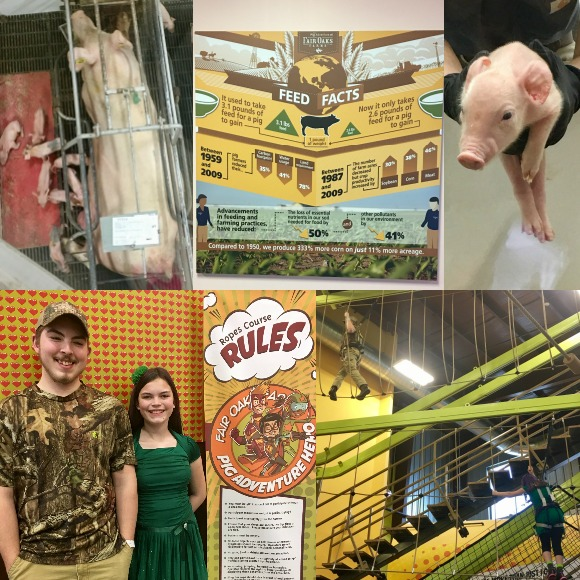 Spring Break Tilton Pig Adventure Fair Oaks