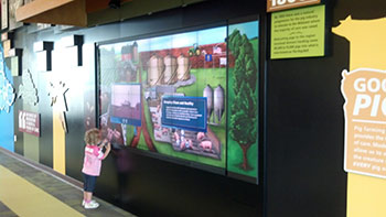 Interactive screens at Fair Oaks