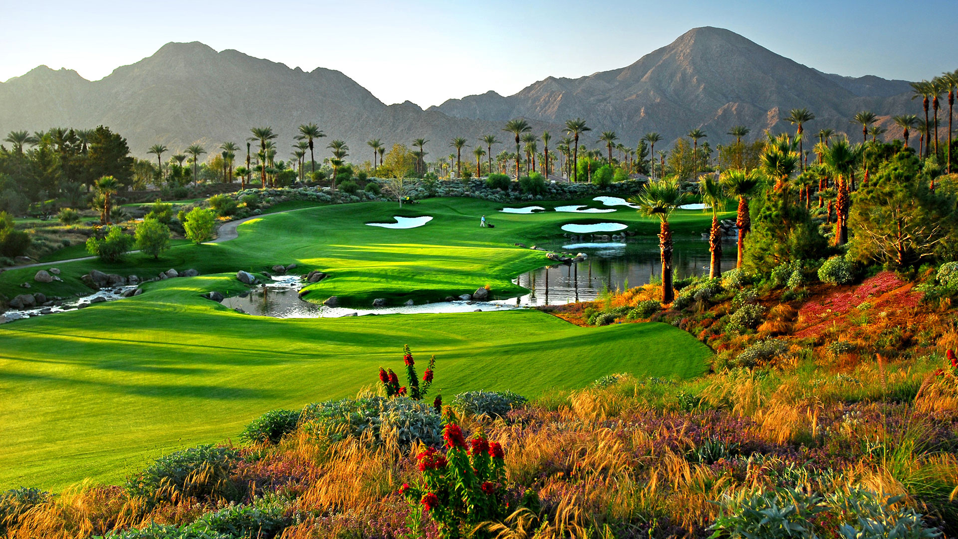 Public Golf Courses That Feel Like Private Clubs in