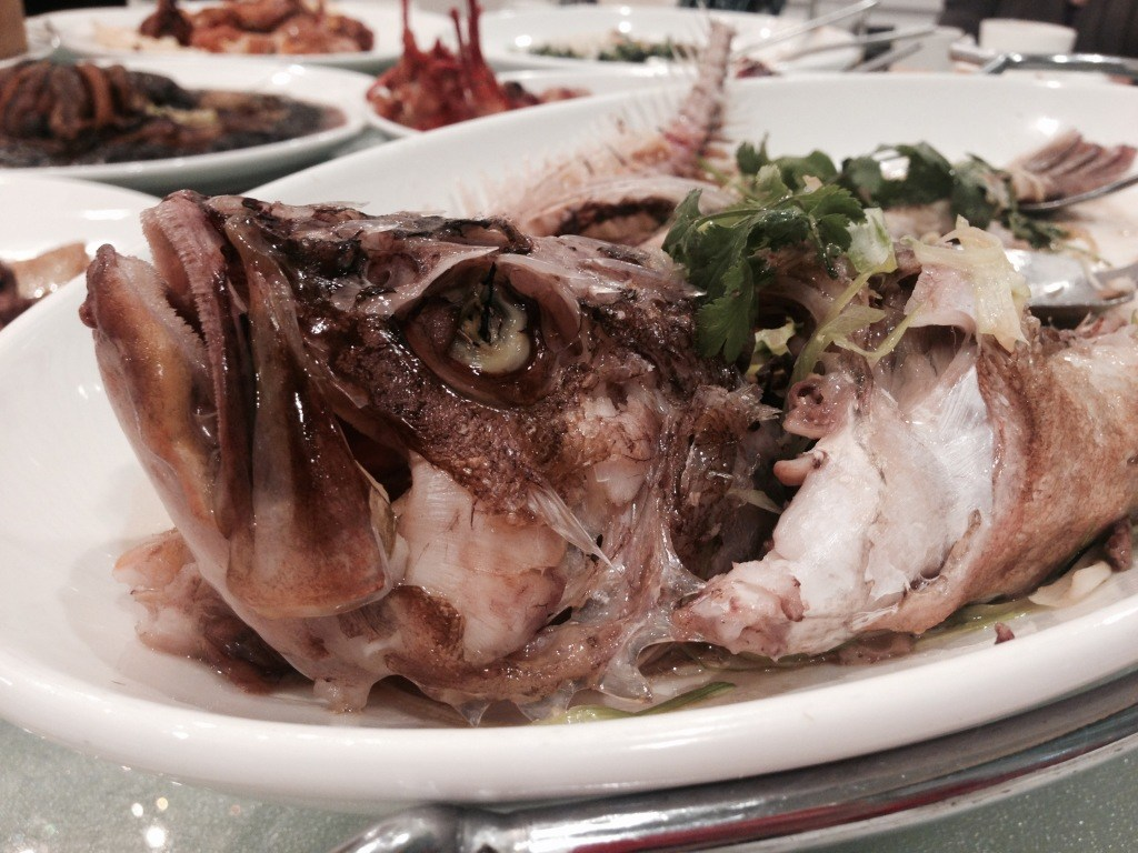 Lee whole rock cod at Chef Tony Seafood Restaurant
