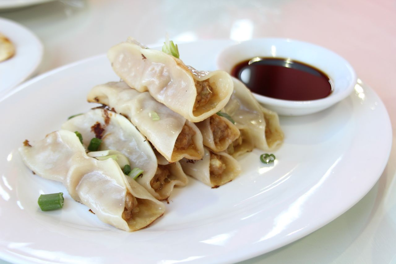 pan-fried meat dumplings